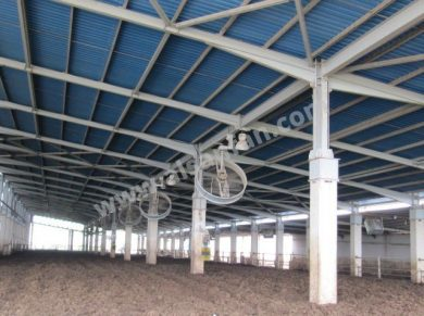 Agriculture Ceiling Fans Applications, Agriculture HVLS Fans Applications