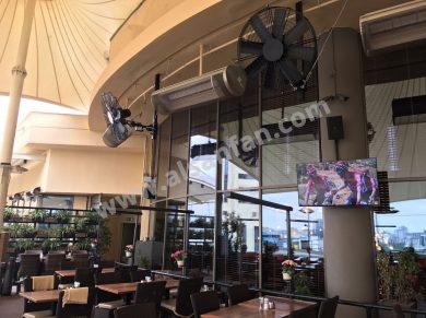 pivot fans for cafe