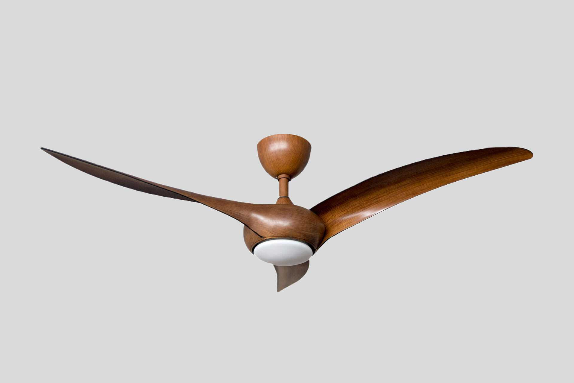 Profan Hisar - Brown, With Light Ceiling Fan