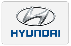 Ceiling Fan Customer - Hyundai